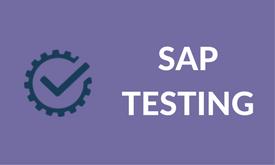 sap testing course